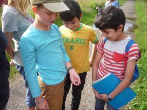 mit den Junior-Moorführern Spannendes entdecken
