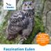 Ausstellung Faszination Eulen